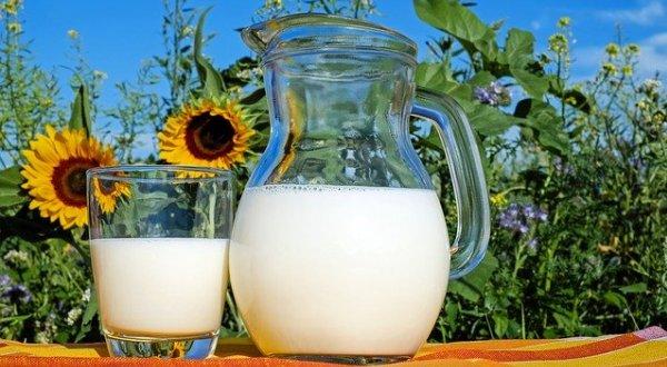 Выбираем натуральное молоко