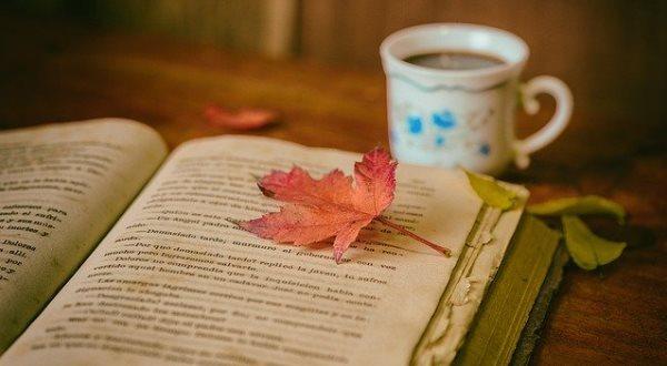 Благодарность книгам  за внесение мудрости в вашу жизнь