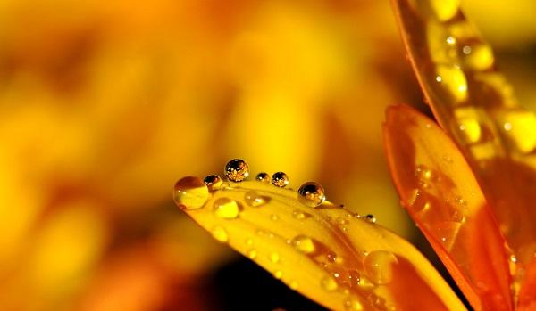 желтый цвет характеристика