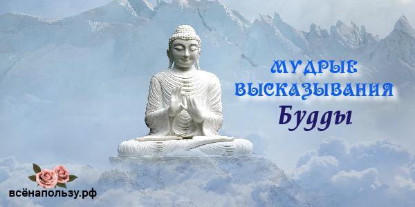Высказывания Будды