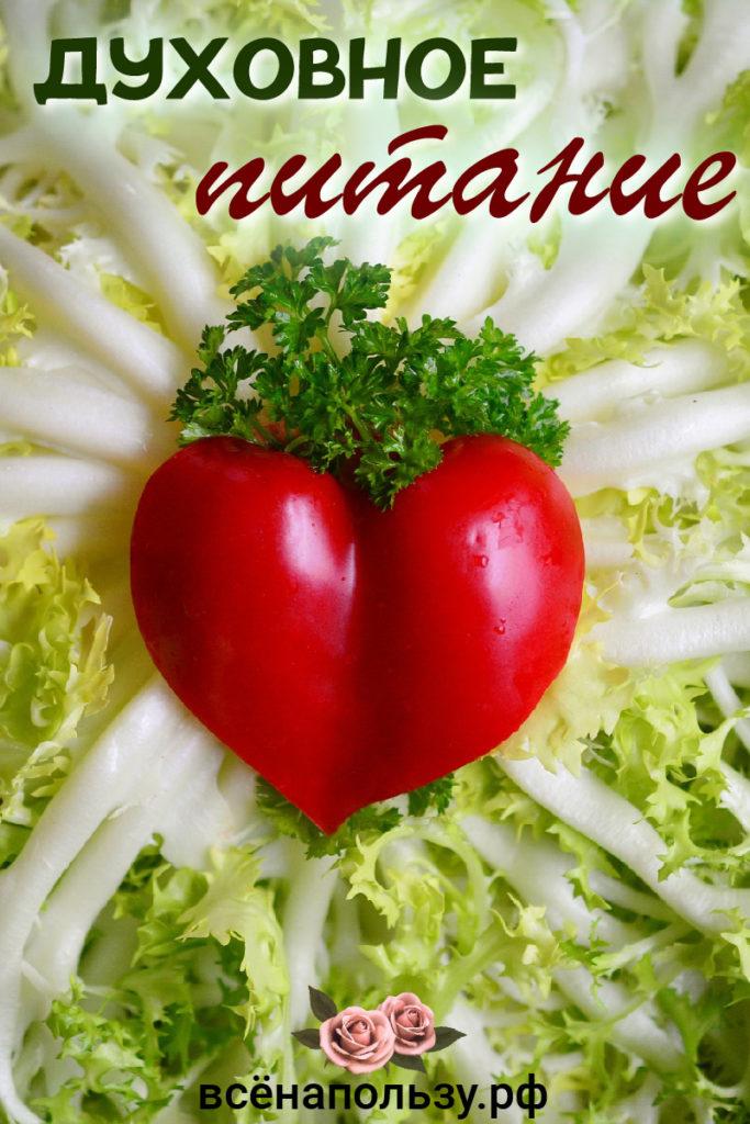 Духовное питание